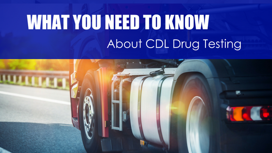 What You Need to Know About CDL Drug Testing - Apex CDL