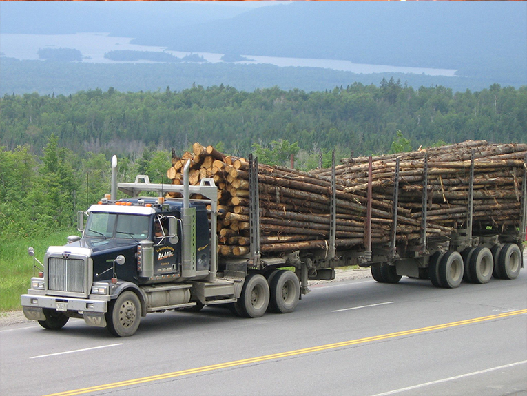 Semi truck with large logs behind it, driving through a northeastern forest