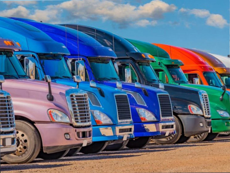 Eight trucks are lined up, all different colors
