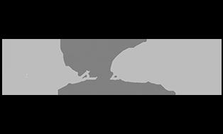 https://apexcdl.com/wp-content/uploads/2020/01/stevens-logo.png